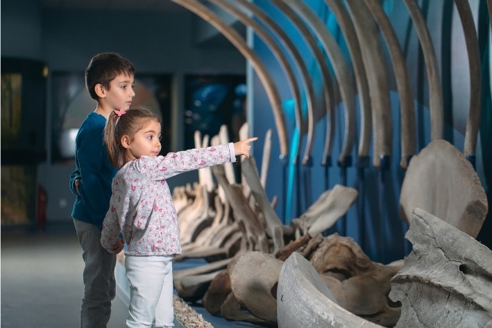 Boy and girl looking at exhibit at museum.