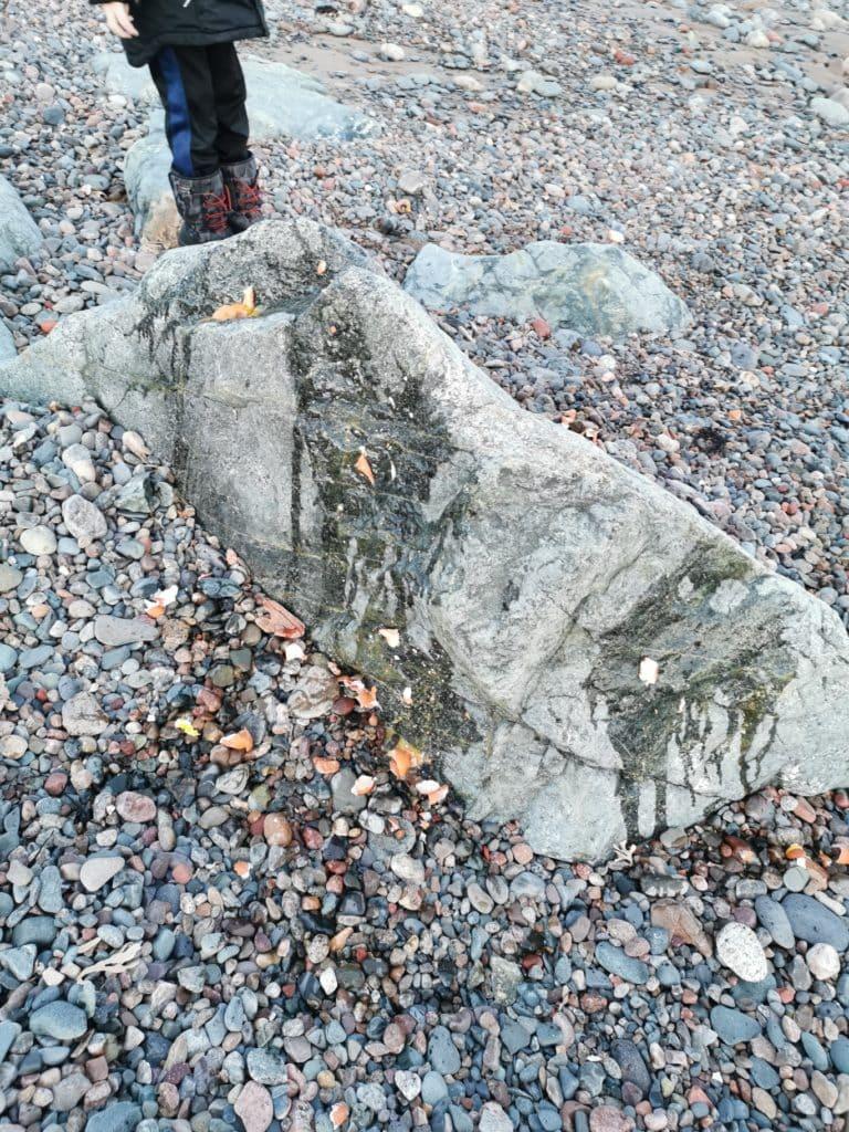 Rock beach.