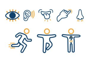 Graphics of the 8 different senses.