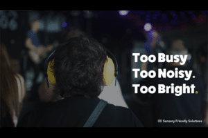 Back of person's head wearing noise cancelling ear muffs and the words too busy, too noisy, too bright and the Sensory Friendly Solutions logo