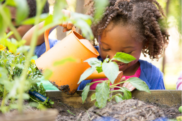 Young girl watering a plant in her backyard.