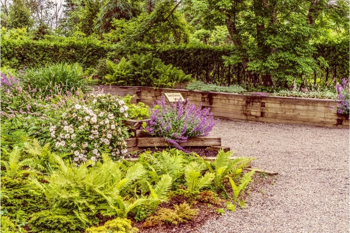 Picture of the Sensory Garden at Kingsbrae